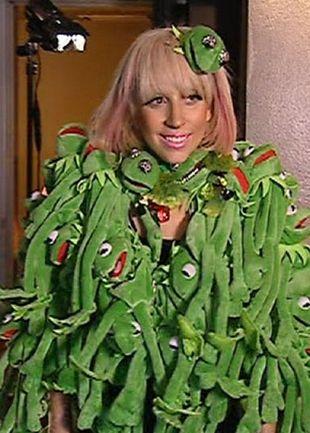 Lady Gaga kolejną twarzą PETA?