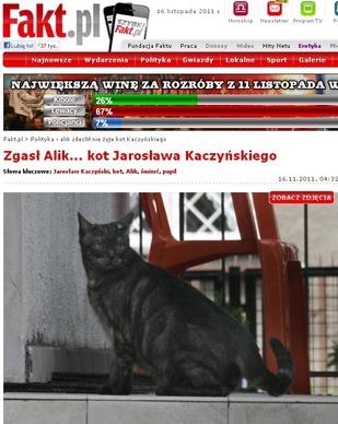Alik nie żyje – odszedł kot Kaczyńskiego