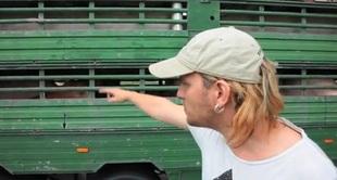 Co Wojtek Łuszczykiewicz robi ze świniami? [VIDEO]