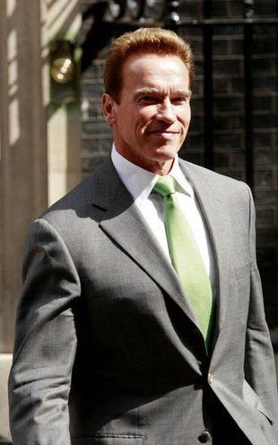 Arnold Schwarzenegger rzuca politykę