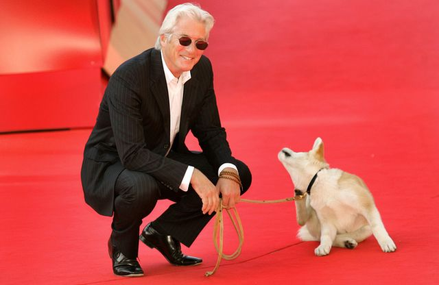 Richard Gere na czerwonym dywanie z psem (FOTO)