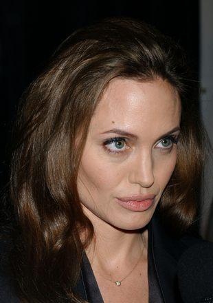 Angelina Jolie ma zwierzyniec i dzieciniec