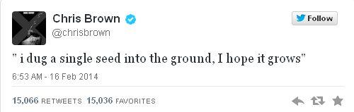 Ariana Grande w czu�ych obj�ciach Chrisa Browna (FOTO)