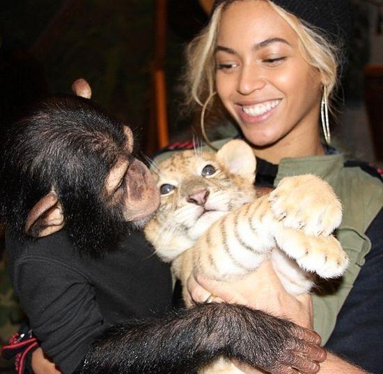 Beyonce POZWANA za kradzież tekstów piosenek!