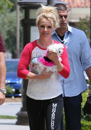 Britney Spears chciałaby mieć córkę