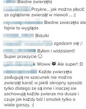 Lawina krytyki pod TYM VIDEO Lisowskiej (Insta)