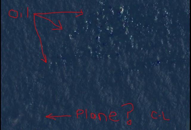 Courtney Love odnalazła zaginiony samolot Malaysian!
