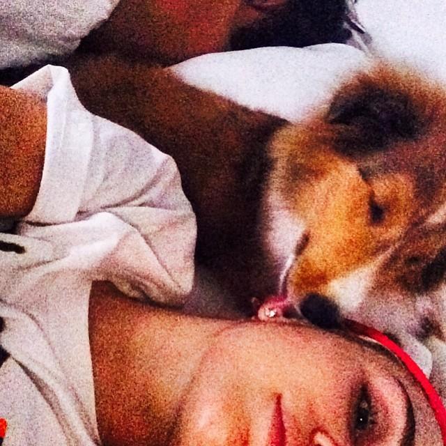 Miley Cyrus �pi z psami (FOTO)
