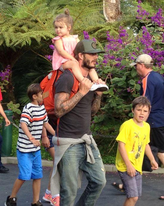 Mała Harper robi kucyki tatusiowi (FB)