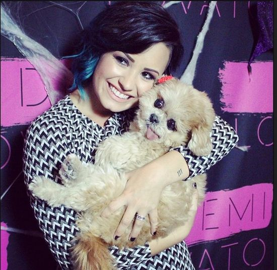 Demi Lovato wzięła ślub w tajemnicy?