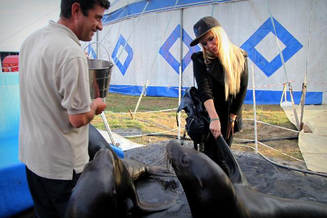 Doda wjedzie na arenę cyrkową na słonicy (FOTO)