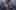 Dorota Wróblewska o modzie na chwilowych celebrytów [VIDEO]