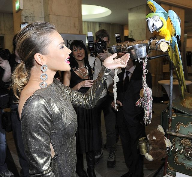 Edyta Herbuś na pokazie mody w złotej sukni (FOTO)