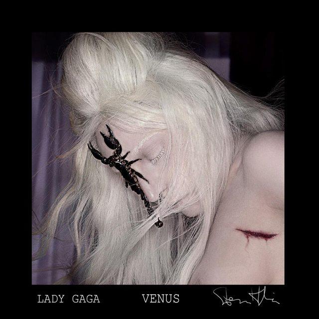 Nowa piosenka Lady Gagi - Venus (VIDEO)
