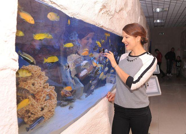 Gwiazdy otwieraj� oceanarium (FOTO)