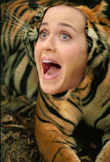 Nowa piosenka Katy Perry - Dark Horse