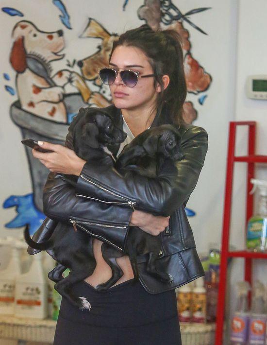 Pamiętacie aferę z głodzonymi psami Kylie Jenner? (FOTO)