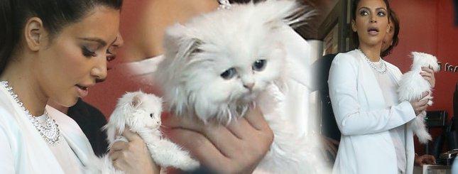 Kim Kardashian zabrała kociaka do fryzjera (FOTO)
