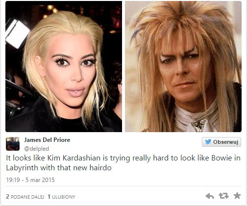 W sieci już roi się od memów z włosami Kim Kardashian (FOTO)