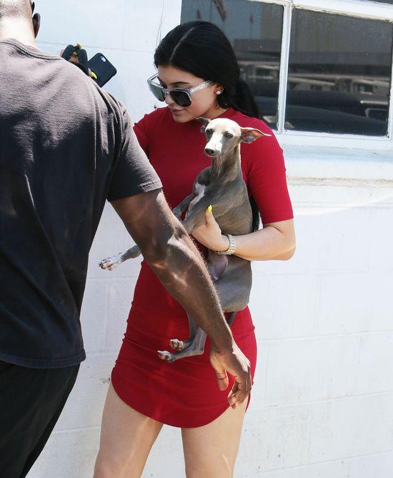 Tak wygl�da Kylie Jenner W PRACY (FOTO)