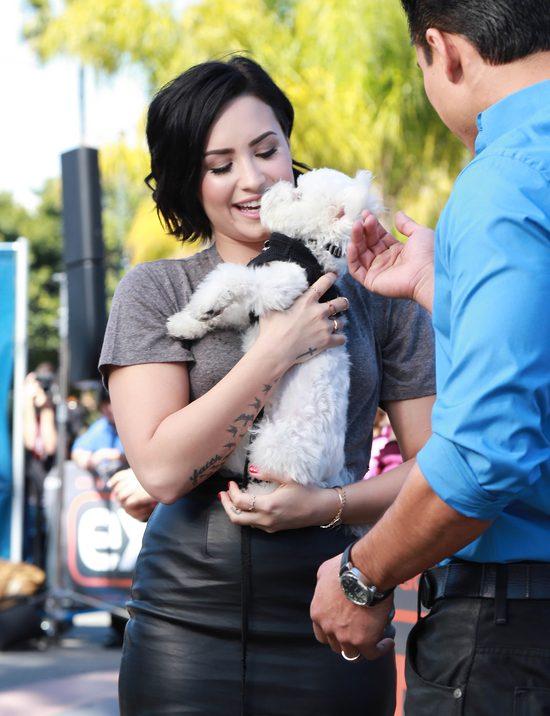 Demi Lovato w żałobie