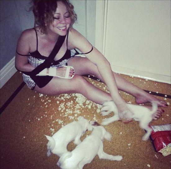 Mariah Carey wysłała swoje psy na kosmiczne wakacje