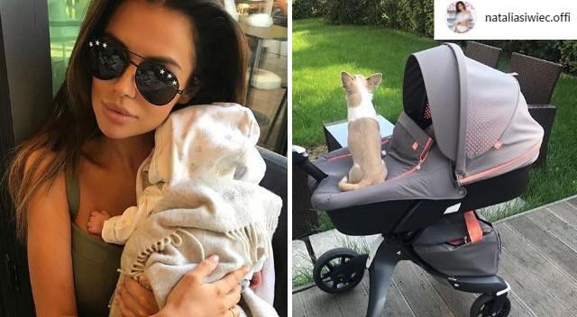 Pies na wózku u Natalii Siwiec i mamy aferę (Instagram)