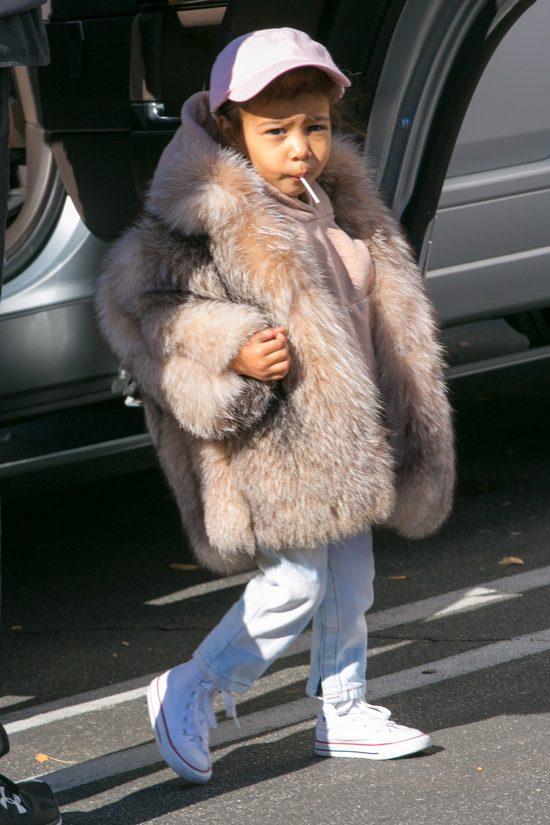 Nori na bogato, czyli mała dama w futrze (FOTO)