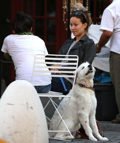 Olivia Wilde na kawie z przyjaciółką (FOTO)