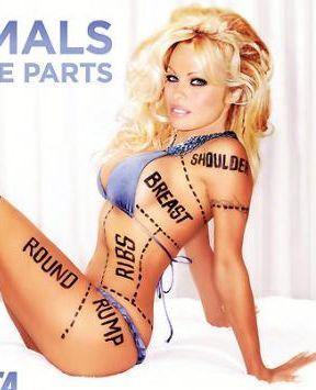 Zakazana Pamela Anderson (FOTO)