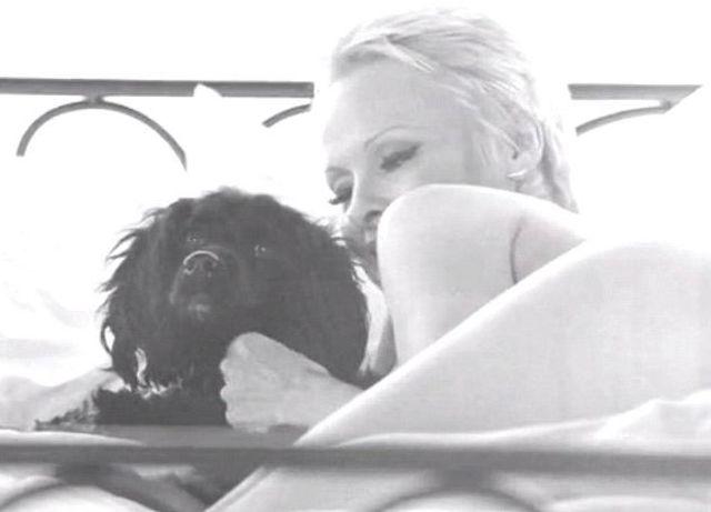 Pamela Anderson jak za starych dobrych czasów (VIDEO)