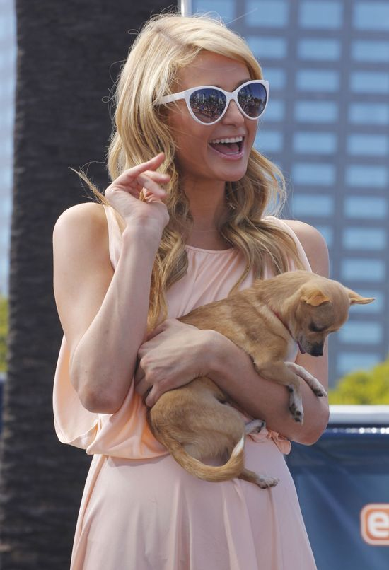 Co 400 kilogramów kokainy robiło na ranczu Paris Hilton?