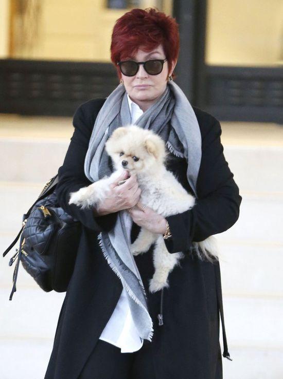 Sharon Osbourne przerażona wynikami badań