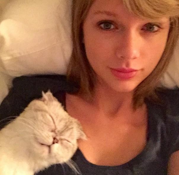 Atak na ubezpieczone na 40 milionów nogi Taylor Swift!