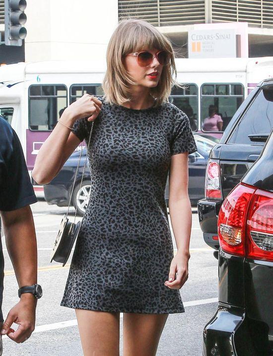 Co powiecie na Taylor Swift w kocim wydaniu? (FOTO)