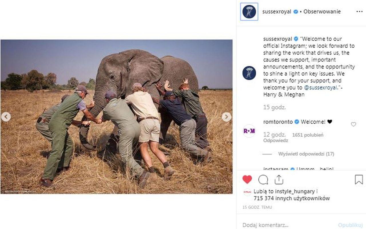 Instagram księcia Harry;ego