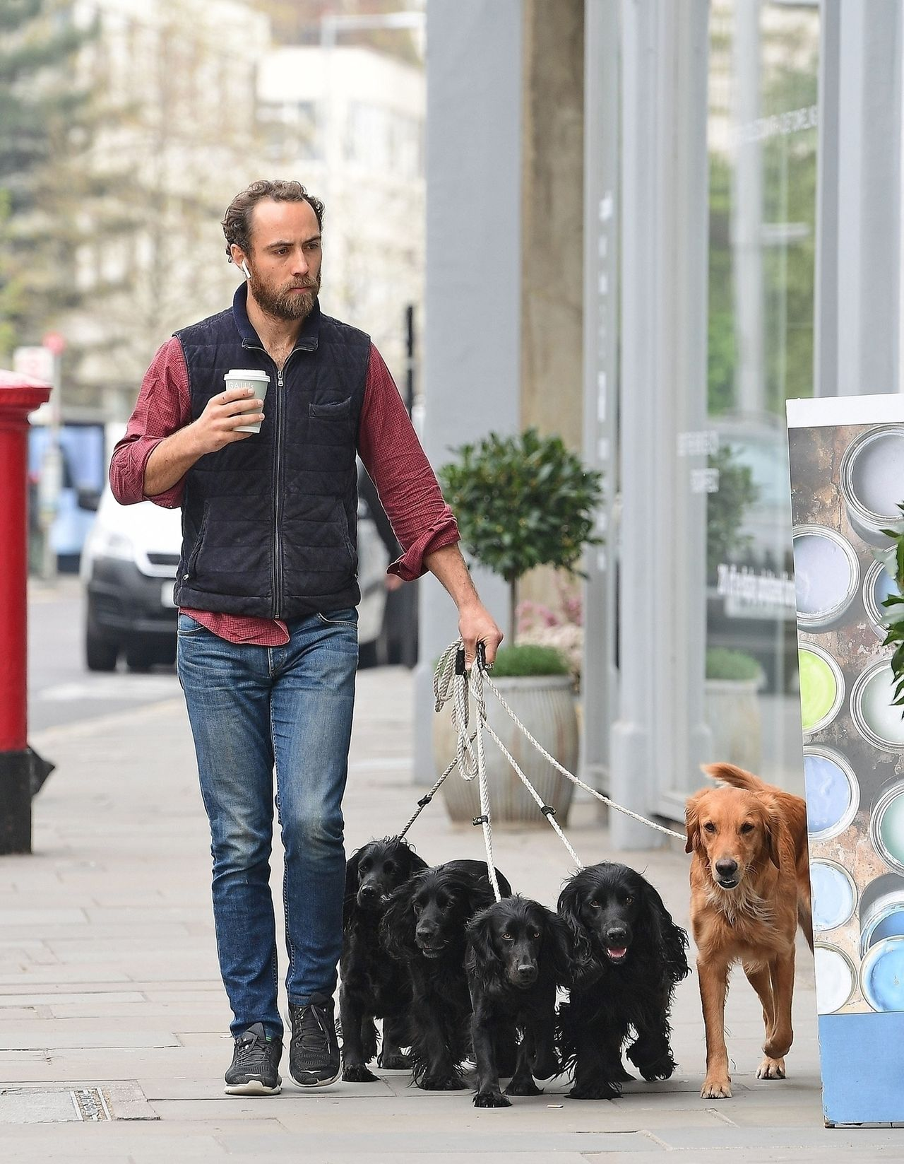 *EXCLUSIVE* Who let the Dogs Out - who, Who, Who - lol - Kate Middleton's Brother James Middleton Keeps busy as he's pictured walking along the Kings Road in Chelsea walking 5 dogs! / BACKGRID , kod: James Middleton