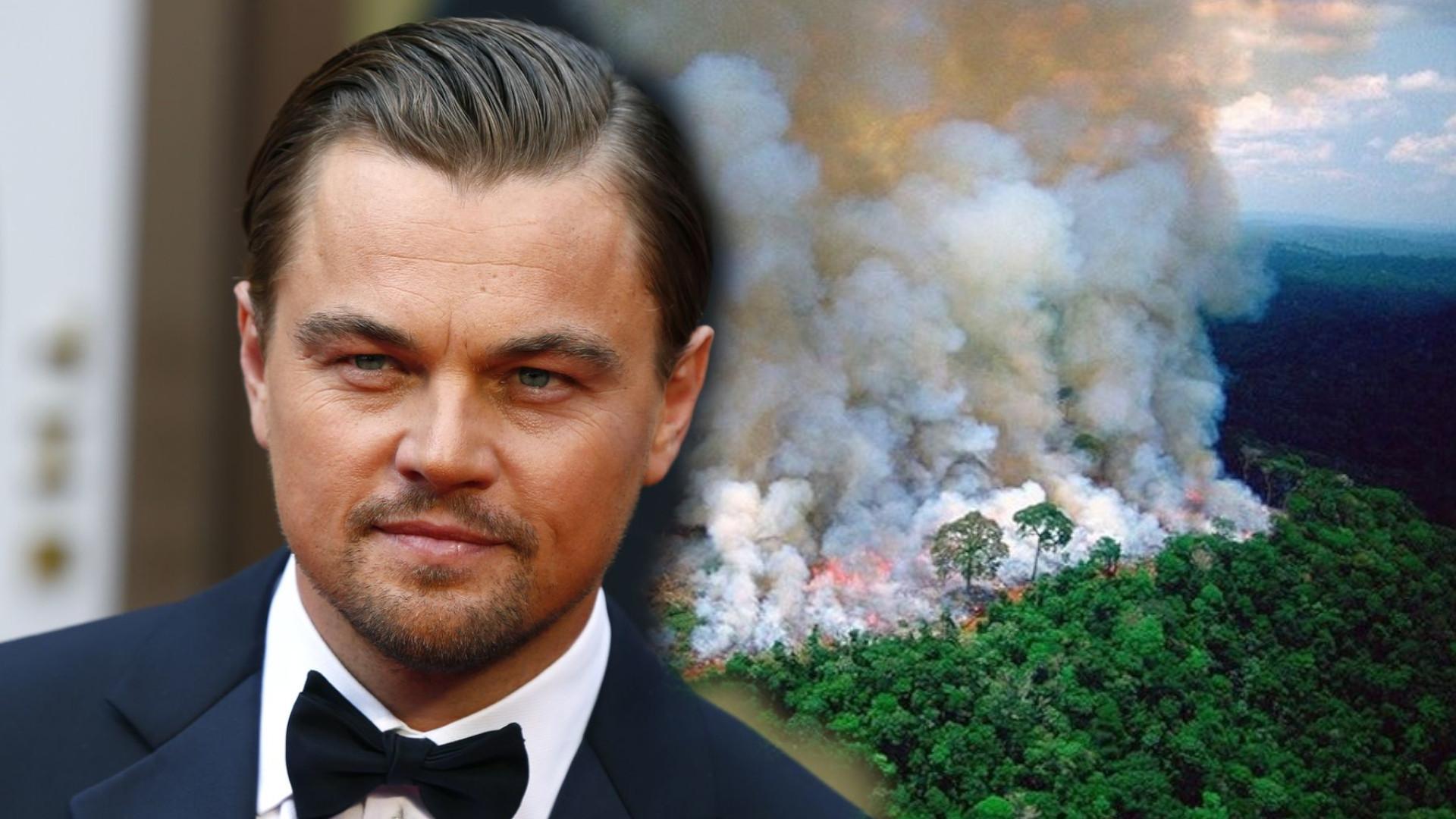Leonardo DiCaprio ratuje lasy Amazonii. Wydał oświadczenie