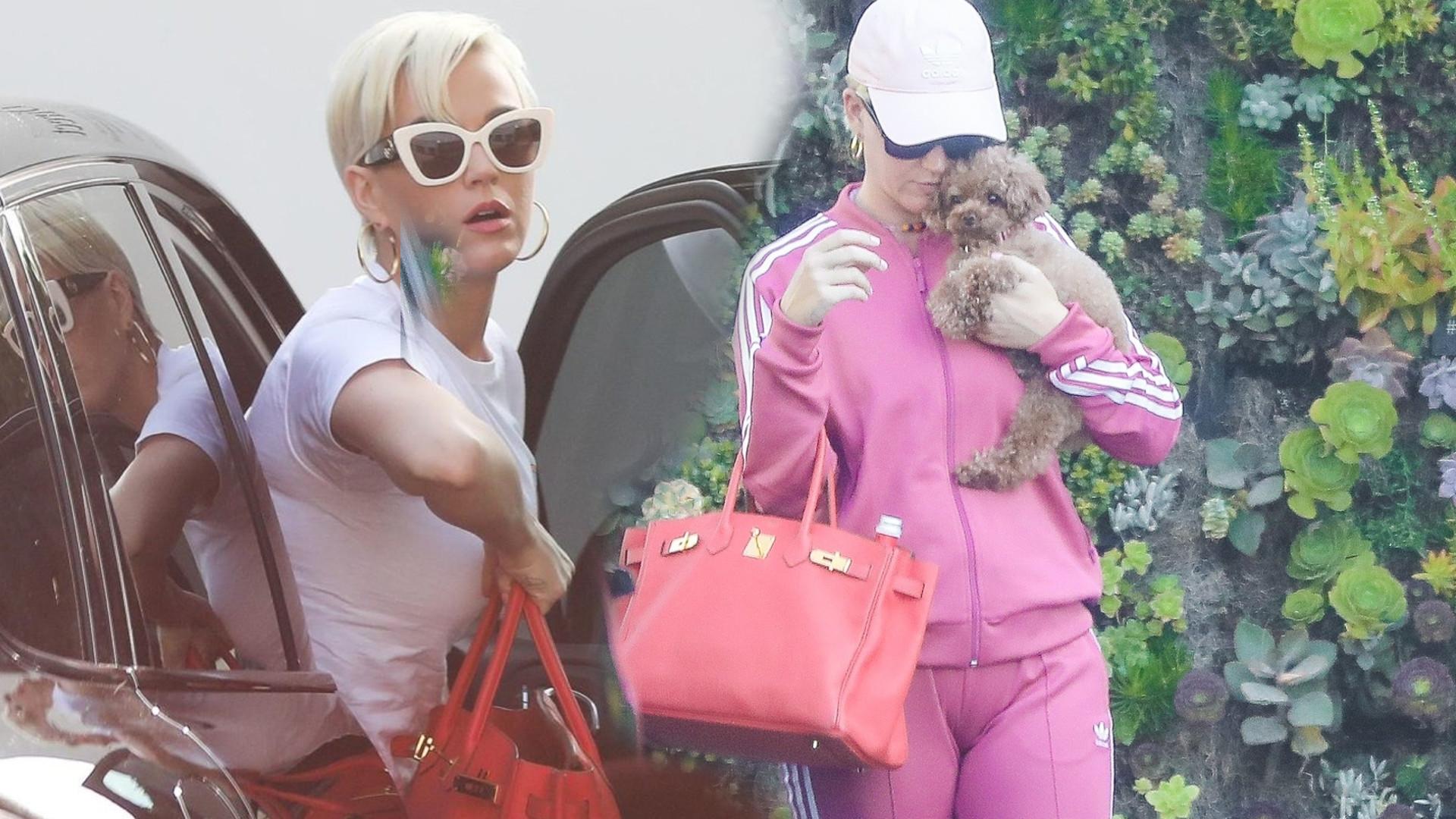 Katy Perry jak różowa landrynka na spacerze z pieskiem, który stał się hitem Internetu!