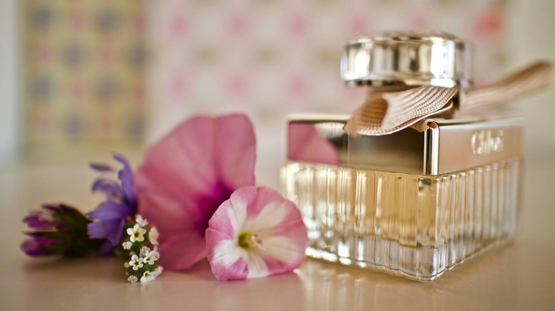 To ulubione perfumy gwiazd. Wiemy, gdzie je kupić!
