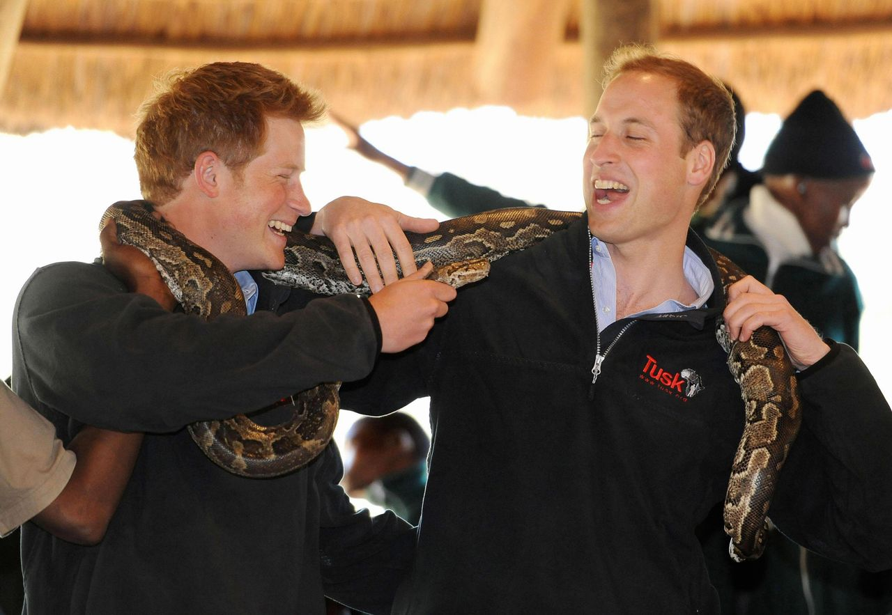 William i Harry
