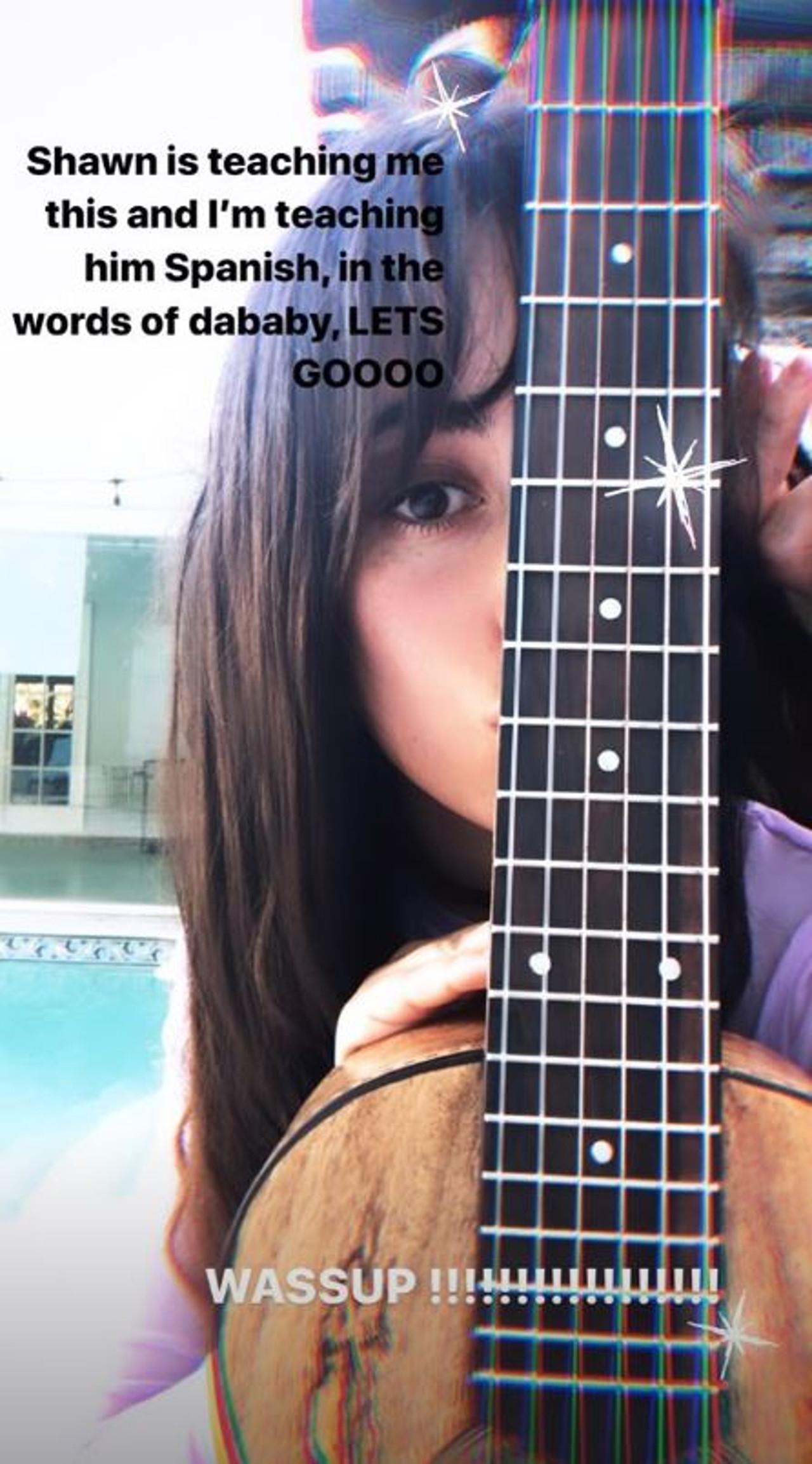Zakochana para - Camila Cabello i Shawn Mendes nie próżnują podczas kwarantanny, tylko się uczą.