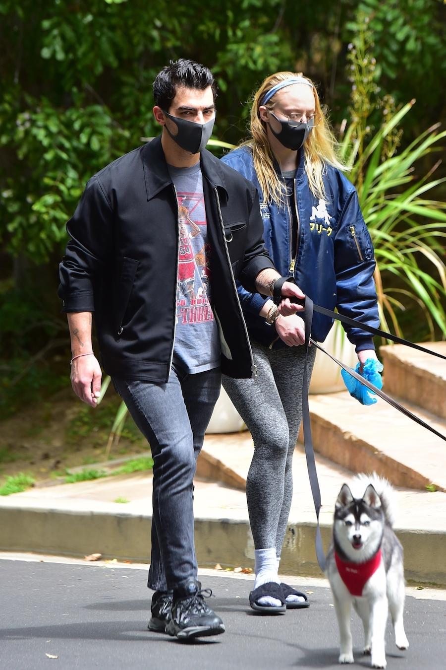 Joe Jonas i Sophie Turner na spacerze z psami.