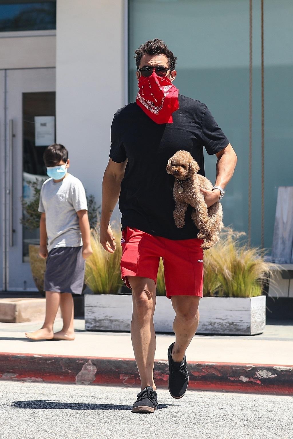 Orlando Bloom z synem Flynnem i pieskiem Katy Perry.