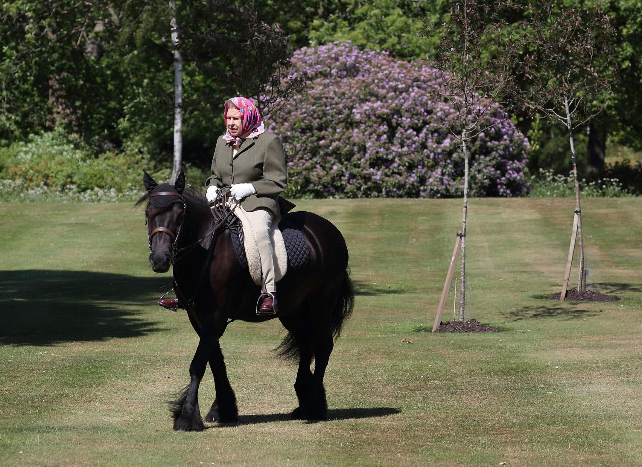Królowa Elżbieta na koniu