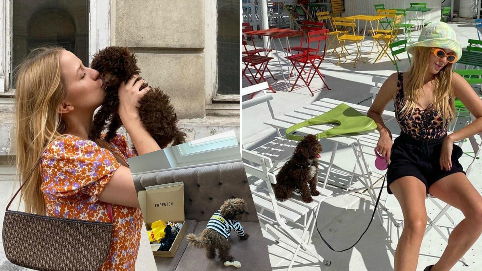 Jessica Mercedes kupiła psu MARKOWE ubrania. Ceny zwalają z nóg