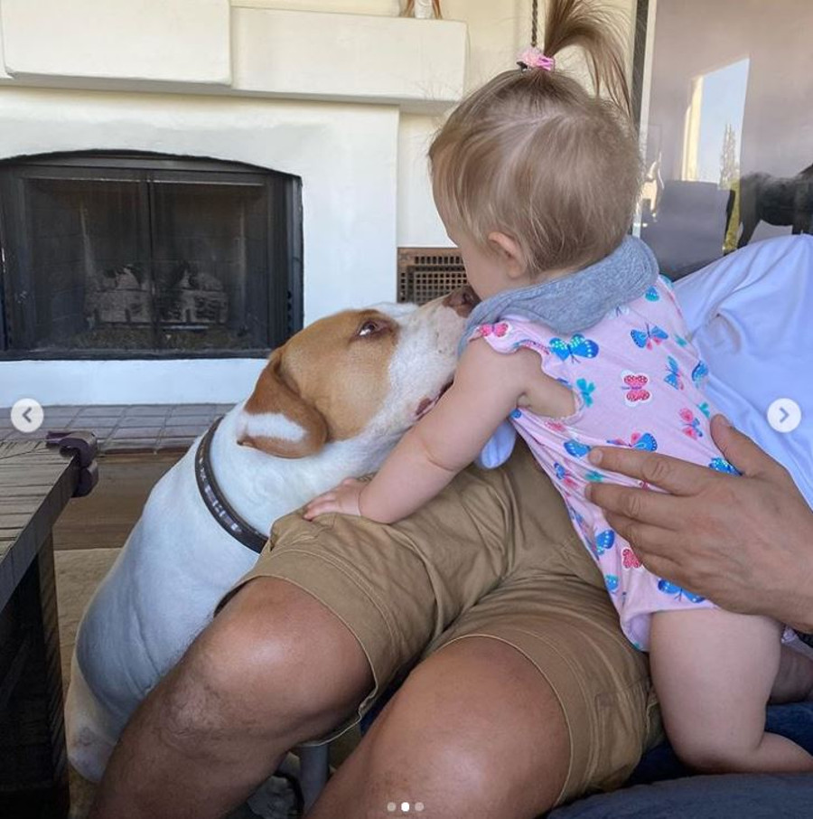Córeczka Joanny Krupy z psem.