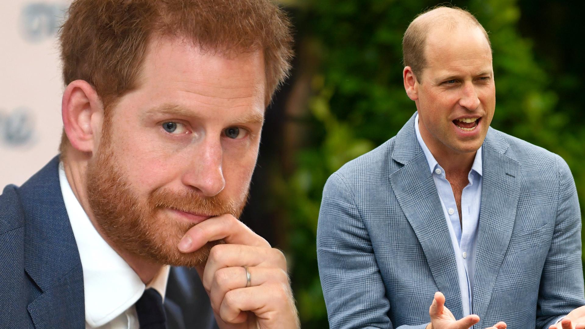 Książę Harry i książę William spotkali się w SEKRECIE po 298 dniach?