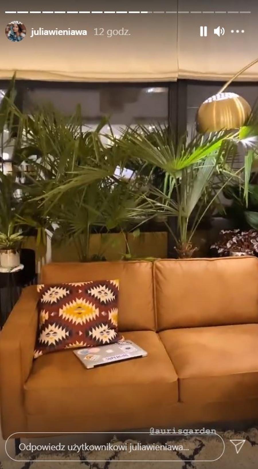 Dżungla w mieszkaniu Julii Wieniawy.