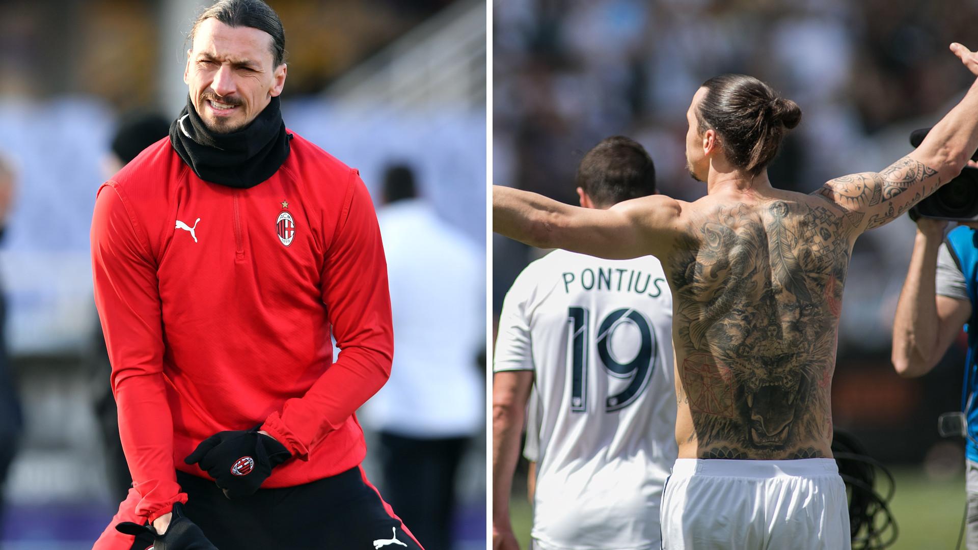 SZOK! Zlatan Ibrahimović zabił lwa?!